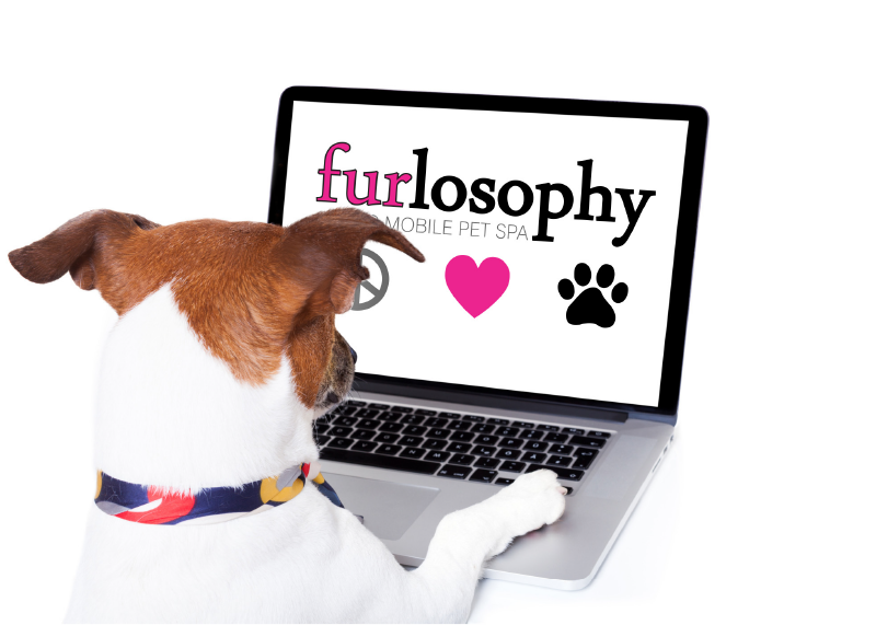 Furlosophy Icon
